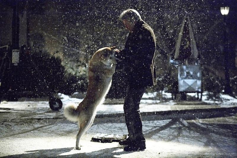 忠犬八公的故事